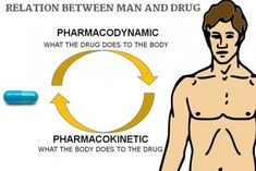 Learn pharmacology online for free! We provide free pharmacology lessons. Pharmacology - the study of drugs. Learn the basic concepts of pharmacology. Learn about pharmacokinetic and pharmacodynamic. Online Nursing Programs, Accelerated Nursing Programs, Lpn Programs, Certificate Programs, Np School, School Info, Pharmacy School, Pharmacology Nursing, Emergency Medicine