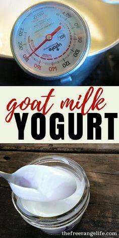 Goat Milk Recipes: Learn how to make your own Goat Milk Yogurt at home! Goat Milk Recipes, Yogurt Recipes, Cheese Recipes, Make Your Own Yogurt, Making Yogurt, Goat Care, Milk Ice Cream, Raw Milk, Fresh Milk