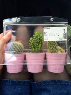 plnts:  accidentally spends all my money on plants