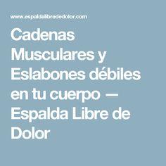 Cadenas Musculares y Eslabones débiles en tu cuerpo — Espalda Libre de Dolor