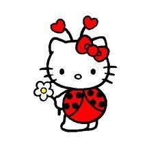 Ladybug Kitty