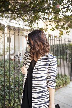 zebra is the new...