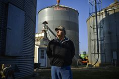 Jim Benham of Indiana is among a small but growing number of American farmers moving back to conventional non-GMO crops
