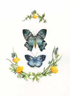 Original Watercolor Painting-Butterflies and Buttercups via Etsy