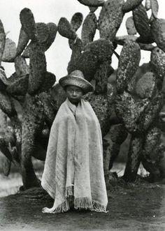 030_Bambino davanti ad un cactus, 1928.jpg -