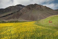 Un nuovo parco nazionale in Afghanistan » fotografie di Matthieu Paley per Naitonal Geographic