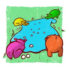 1000+ images about Hippo pictures on Pinterest ...