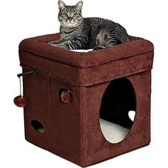 Cat Pet House Bed Indoor Play Center Kitten Kitty Box Bed Foldable Travel  NEW #CatHouse