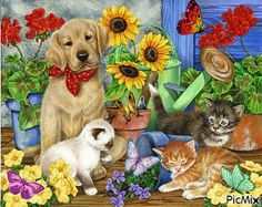 Shop Bits and Pieces jigsaw puzzle store for kids and adults! A dog, wearing a kerchief, watches over three playful kittens 1000 piece jigsaw puzzle by artist Jane Maday measures 20 x Most Beautiful Paintings, Most Beautiful Animals, Decoupage, Sky Art, Reno, King Charles Spaniel, Art Pictures, Les Oeuvres, Dog Cat