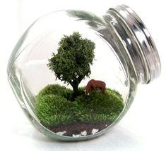 Simple terrarium