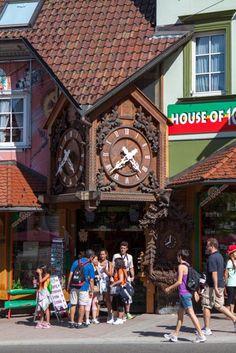Selva Negra, Alsacia y Lago Constanza -Diarios de Viajes de Alemania- Chryslyman (Página 2 de 3) - LosViajeros Munich, As Time Goes By, Bavaria, Times Square, Beautiful Places, Road Trip, To Go, Places To Visit, Pictures