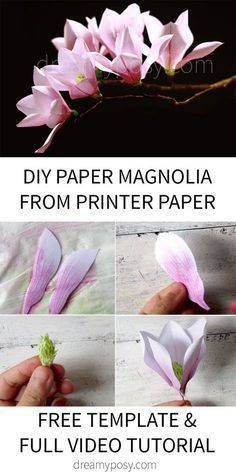How to make paper Magnolia from printer paper, FREE template - - With my free template and step by step video tutorial, you could make any color of paper Magnolia you love. It's so easy and fancy. Faux Flowers, Diy Flowers, Fabric Flowers, Wafer Paper Flowers, Paper Roses, Diy Paper, Paper Crafts, Canvas Crafts, Papier Diy