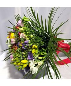 Plants, Fragrance, Plant, Planets