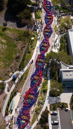 "2600 people form a chain to celebrate the anniversary of the discovery of the DNA. Genentech employees set a Guinness World Record for the Largest ""Human"" DNA Helix on April 2011 in San Francisco. Science Humor, Life Science, Science Nature, Science Geek, Biology Humor, Chemistry Jokes, Grammar Humor, Ap Biology, Weird Science"