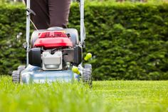 If you're already dreading working in your yard or are worried about fitting it into your schedule, think of it this way: it's exercise! Find out how to burn calories while you make your yard beautiful.