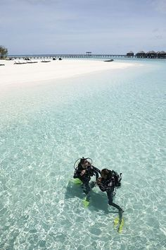 Diving in Maldives.