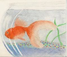 Photobucket Colored Pencils, Fish, Pets, Colouring Pencils, Pisces, Crayons, Animals And Pets
