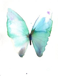 """Wake butterfly – It's late, we've miles to go together.""  -Basho Matsuo watercolor butterfly"