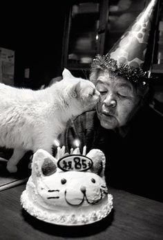 みさおとふくまる by 井原美代子 Misao&Fukumaru ©️Miyoko Ihara ある日、納屋で、野良猫が子供を生みました。そっと見守ることにしたみさおおばあちゃん。 でも、一緒に生まれた兄弟…