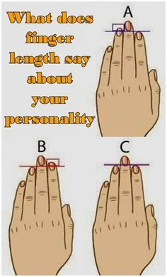 Check out the recent study made by British researchers, which says that your finger lengthcan say a lot about your personality, sexual orientation and even intelligence.