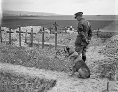 A British officer and his dog at Wavans War Cemetery (which includes the grave of top British ace James McCudden), 1918. The Passion of Former Days: The Crosses, Row on Row #WWI