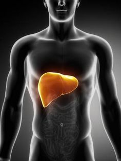 10 Telling Symptoms of Liver Damage ActiveBeat | Page 2