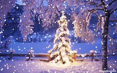 Vánoční přání – obrázky | Přáníčkovnice Christmas Tree, Christmas Ornaments, Snow Globes, Santa, Ceiling Lights, Holiday Decor, Adobe, Christmas, Teal Christmas Tree