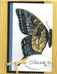 stampin-up swallowtail butterfly.