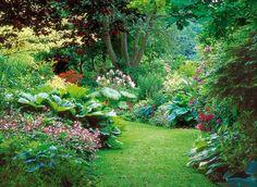 www.rustica.fr - Les bonnes plantes pour un terrain humide