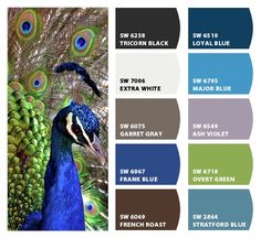 Perfect peacock!    Paint colors from Chip It! by Sherwin-Williams