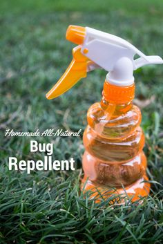 Insects are a big problem here in the south in the summer months. Try this DIY bug repellent that is made with all-natural ingredients.