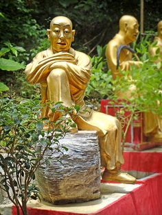 Patience is Golden. The Thousand Buddhas Monestery, Hong Kong