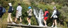 Walking and tramping   Greater Wellington Regional Council