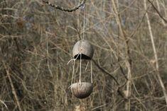 Téli madáretetés | Magyar Madártani és Természetvédelmi Egyesület Bird Feeders, Outdoor Decor, Teacup Bird Feeders