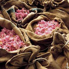 Les matières premières d'origine végétales : pétales