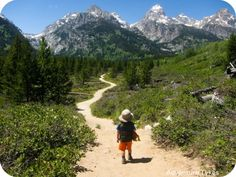 How to Plan a Hike With Your Tyke - Adventure Tykes