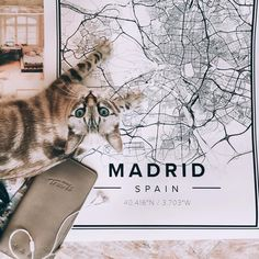 Map poster of Madrid, Spain. Print size 50 x 70 cm. Custom black and white map posters online. Mapiful.com. Cat not included.