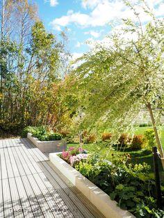 terassi, istutusallas, hakuropaju Alpine Garden, Terrace Ideas, Garden Inspiration, Garden Plants, Outdoor Spaces, Balcony, Garden Design, Landscaping, Sidewalk