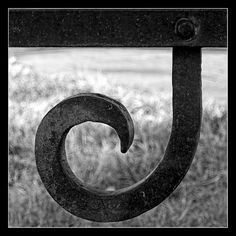 the letter J | Alphabet in Nature - a gallery on Flickr