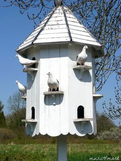 the dovecote    •~•~•    birdhouse