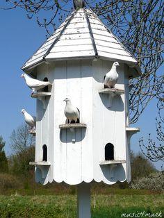 the dovecote    •~•~•    birdhouse