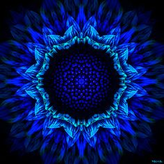 """Blue Sunflower"" - fractal art by Marcelo Dalla, via Flickr"