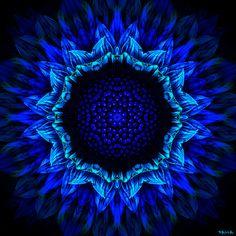 Girasol azul de Marcelo Dalla