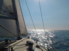 Met de Ronautica op de Noordzee