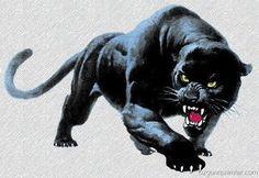 Auf folgende Seite erkennen Sie, wie kann man ganz einfach und schnell der Panther zeichnen lernen. Die Anleitung finden Sie hier.