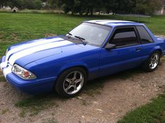 Notchback Mustang, Fox Mustang, Crazy Horse, Mustangs, Bodies, Ford, Bmw, Tools, Ideas