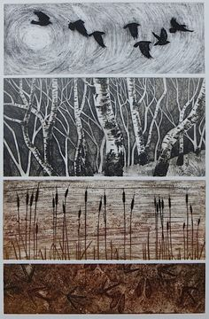 Hester Cox: Her main mediums are collagraph, relief, carborundum and photopolymer prints.