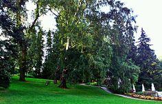 Näsinpuisto, Tampere FIN