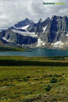 Montanhas Rochosas, Canadá #buddhafresh #landscape #naturephotography