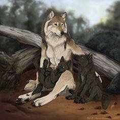 Волки, просто волки.